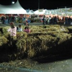 The Tiny Hay Maze