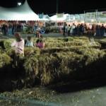 The Tiny Hay Maze